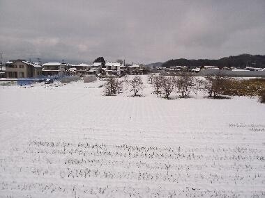 Yukigesiki